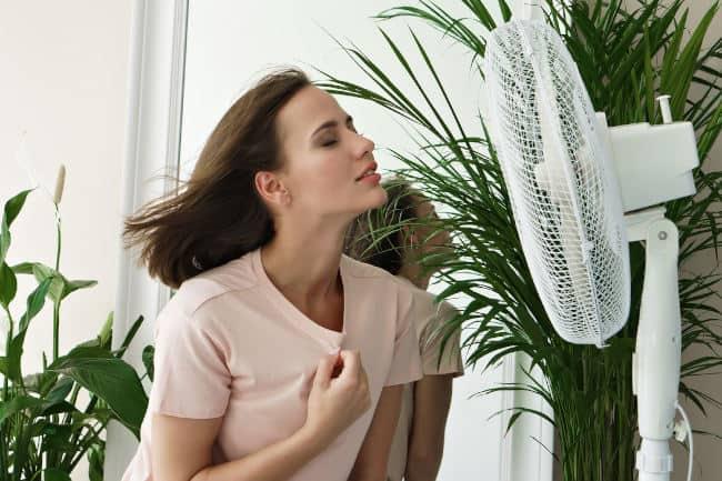 avoid Mosquito-Borne Diseases