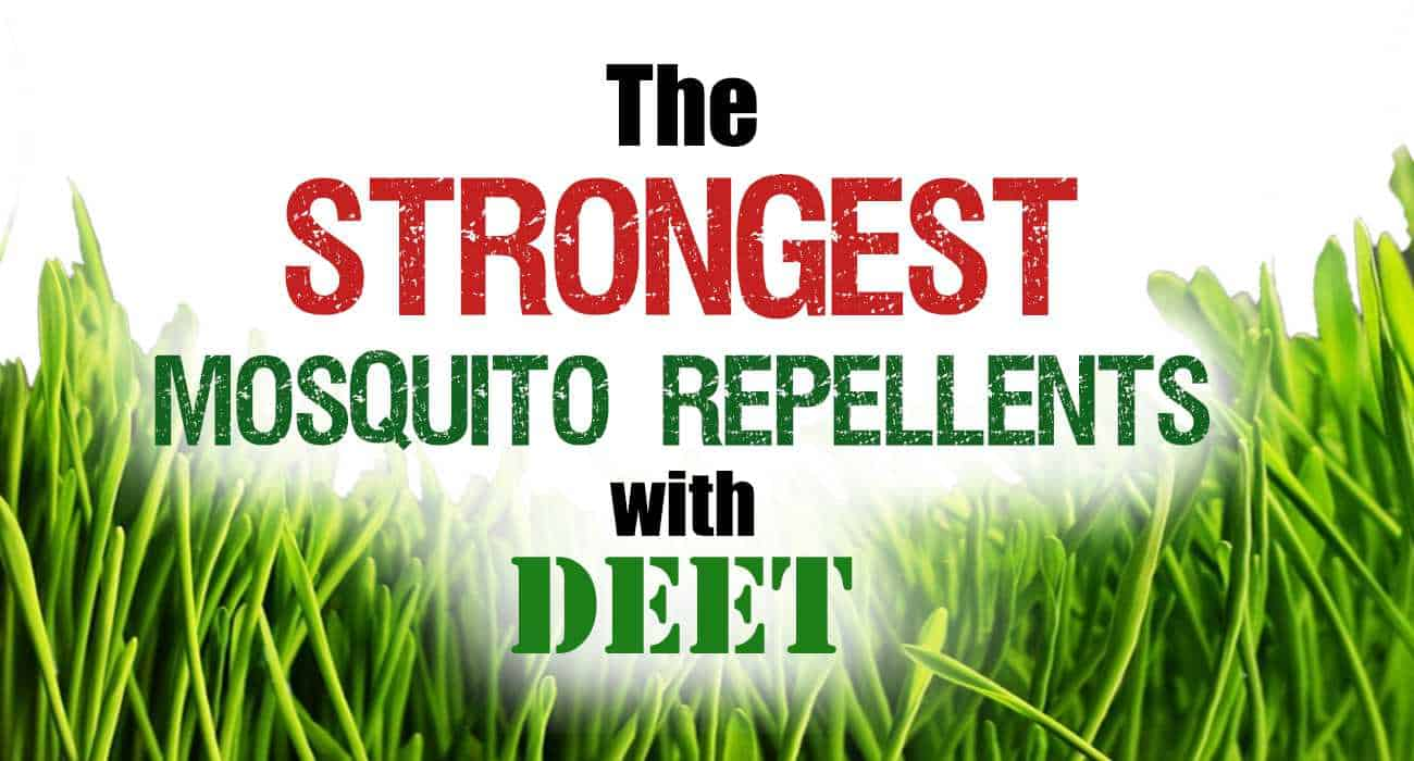 Strongest Mosquito Repellents With Deet Mosquitofixes
