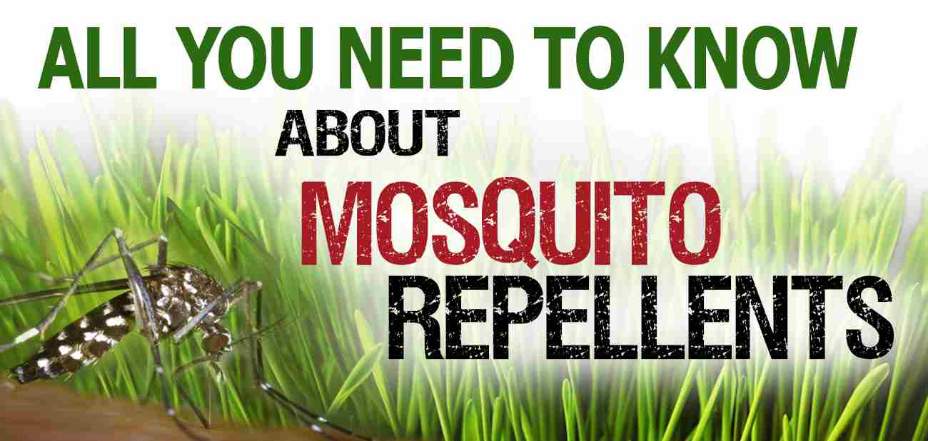 Alle you need to know about mosquito repellents