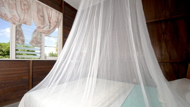mosquito netting bed