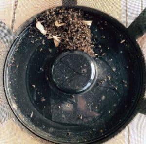 effective indoor mosquito trap