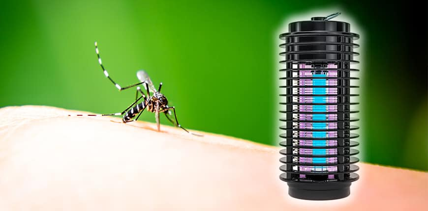 mosquito lantern